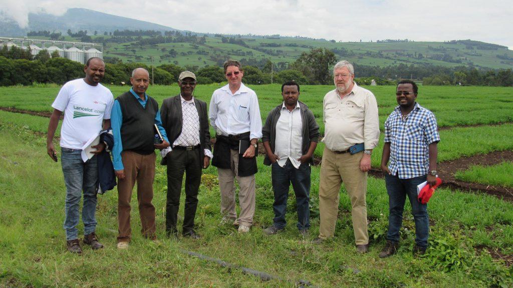 BPAT team with EIAR bread wheat team in Kulumsa
