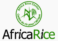 Africa Rice - Rainfed Rice