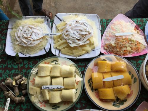 Cassava Products