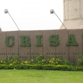ICRISAT workshop based on BPAT assessments