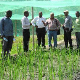 BPAT visits TARI in Tanzania